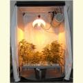 Kit Growbox 250W